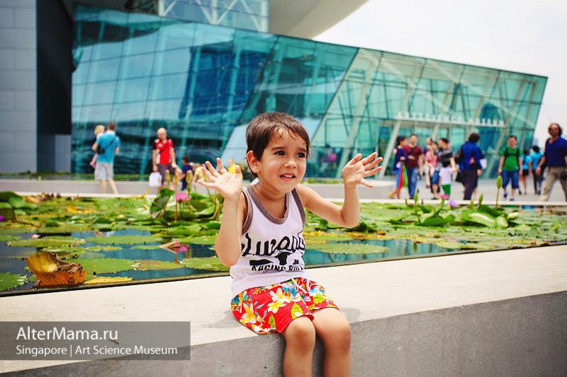 Пруд с лотосами возле Музея искусства и науки Сингапур