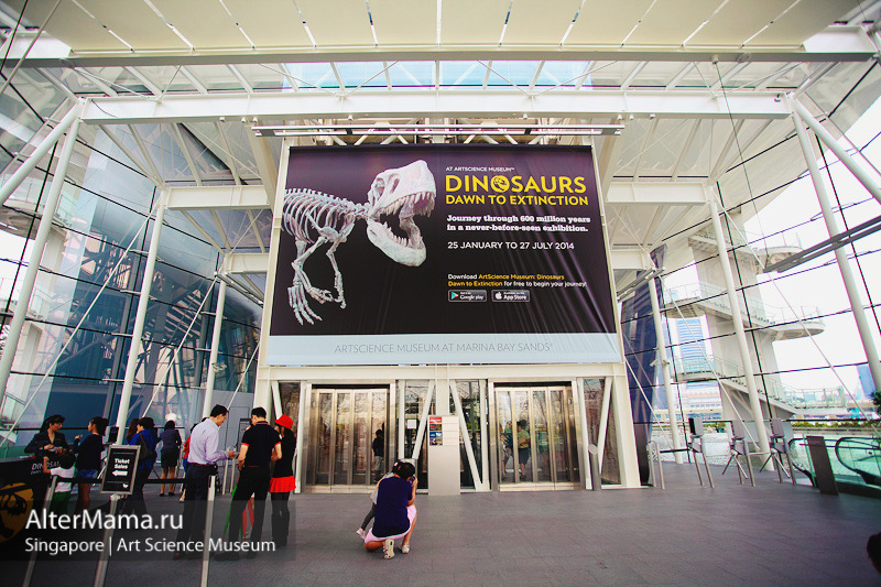 Музей искусства и науки Сингапур здание внутри, Лотос изнутри