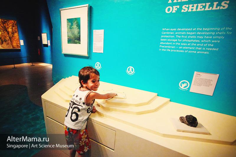 Музей искусства и науки Сингапур. Сингапур музей лотос