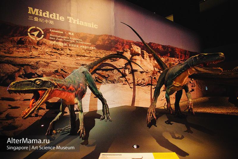 Музей искусства и науки Сингапур - древние останки динозавров, скелеты и копии