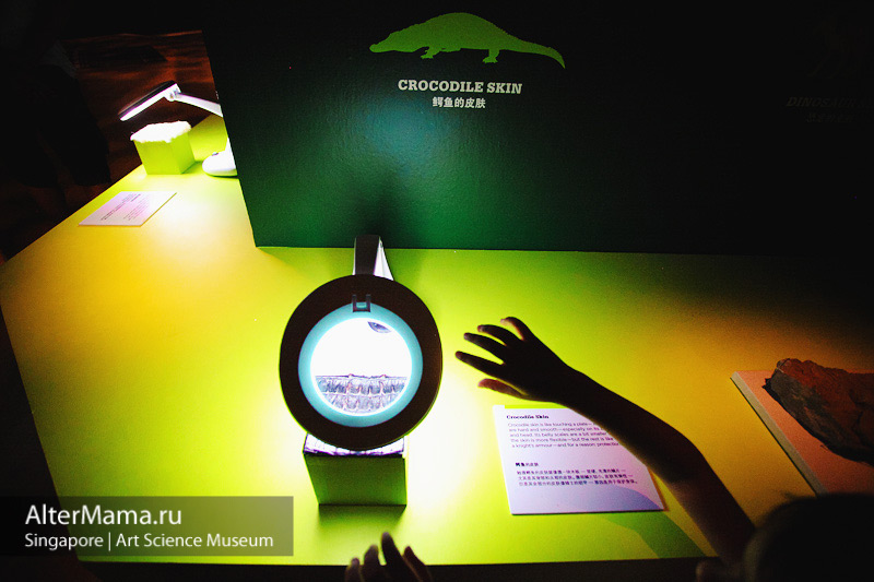 Музей искусства и науки Сингапур - эксперименты для детей