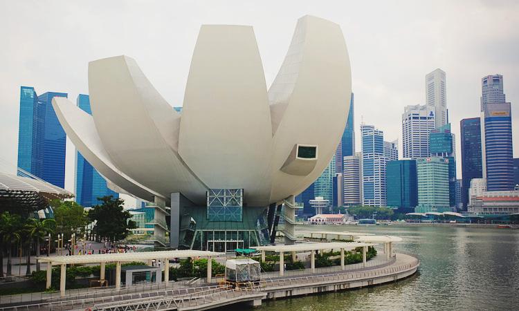 Выставки в Art Science Museum - Сингапур музей Лотос. Музей искусства и науки Сингапур.