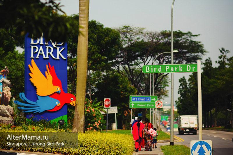Парк птиц Джуронг Сингапур как добарться