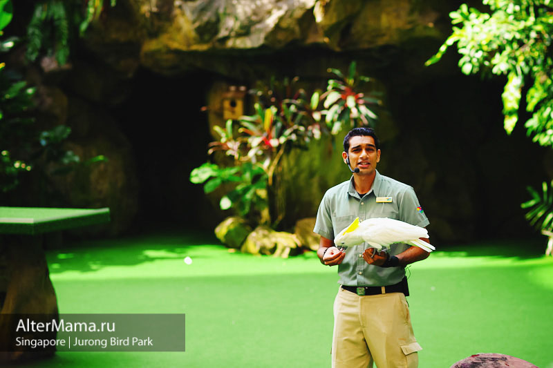 Сингапурский парк птиц в Джуронге
