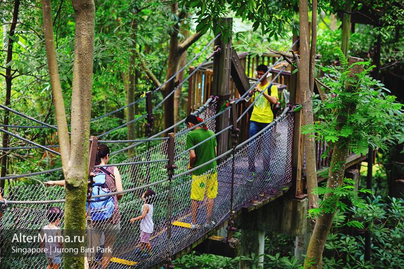 Jurong Bird Park парк птиц в Джуронге Сингапур