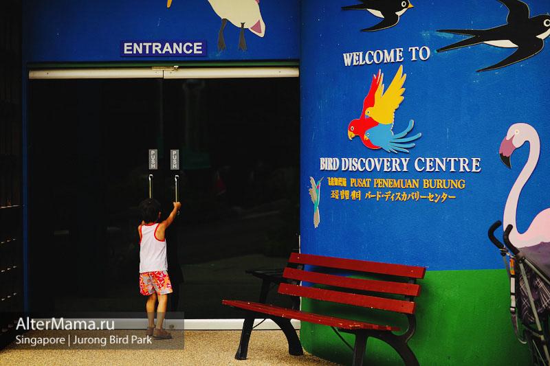 Парк птиц в Сингапуре как добраться в Джуронг