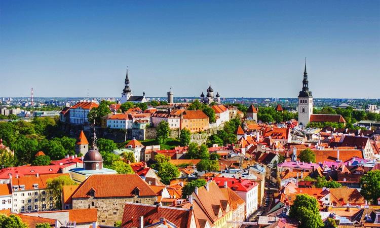 Эстония для детей. Что посмотреть с детьми Таллин