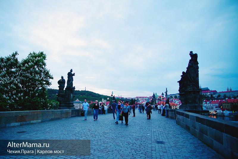 Как найти Карлов мост Чехия