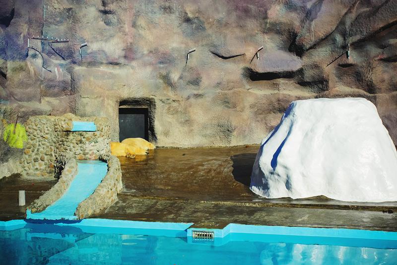 Как доехать в ижевский зоопарк из Перми карта