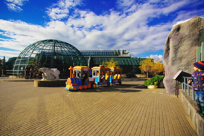 Зоопарк в Ижевске сайт