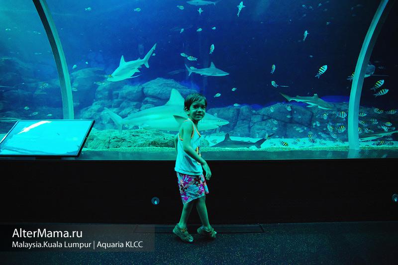 Что посмотреть в Куала Лумпур с детьми