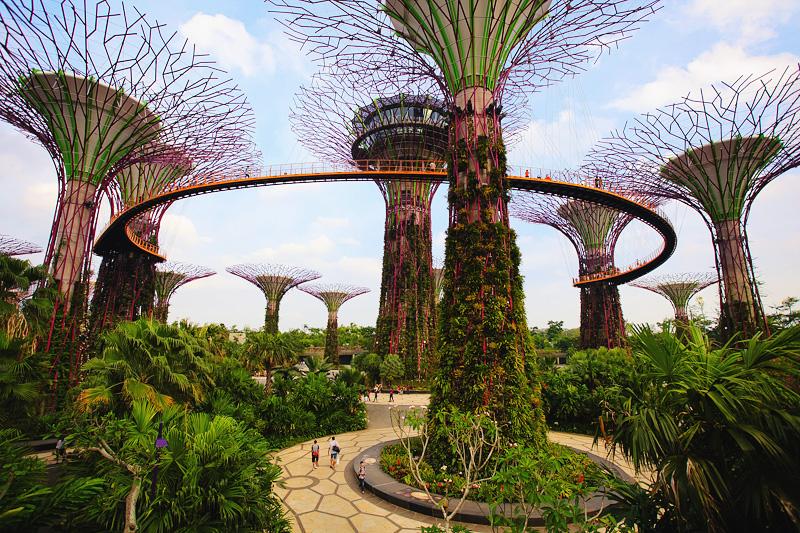 Отзыв про сады у залива в Сингапуре с фото и ценами на вход