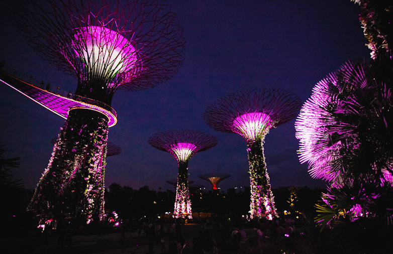 Сад деревьев из аватар в Сингапуре