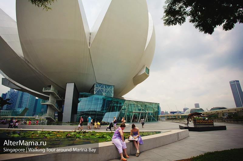 Достопримечательности Сингапура - музей Лотос
