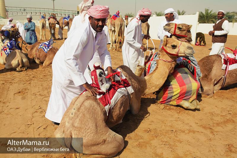 Что посмотреть в Дубае бесплатно