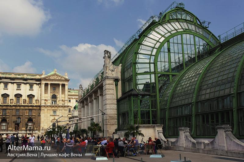 Какое выбрать кафе в Вене