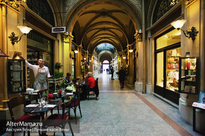 Знаменитые кафе Вены обзор
