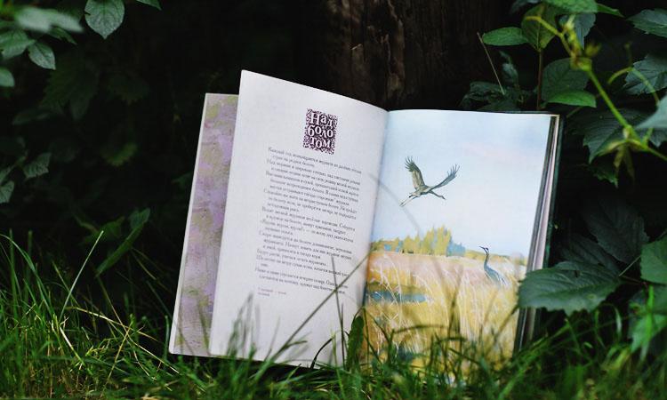 Лучшие книги о природе русского леса для детей.