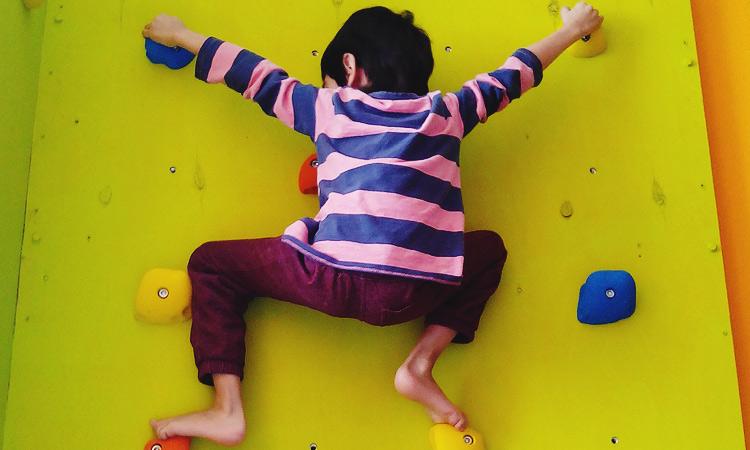 Инструкция как сделать скалодром своими руками. Домашний детский скалодром самому