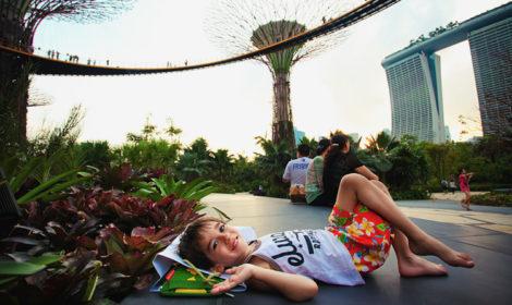 Сингапур из Пхукета цены