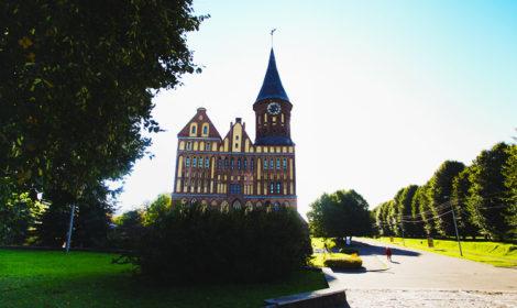 Калининград коронавирус приезжие что посмотреть советы